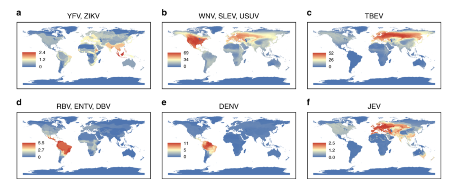 Global maps of emerging flaviviruses