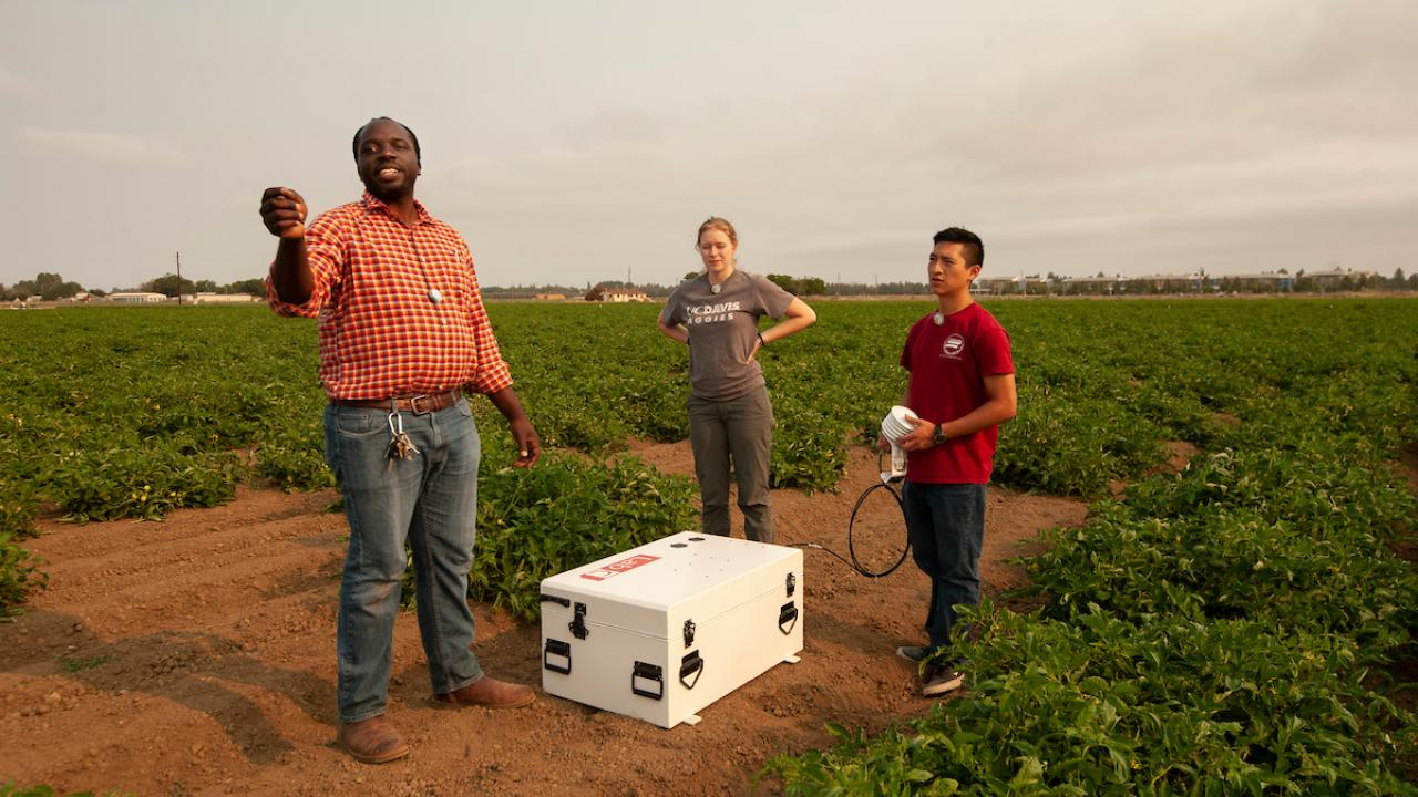 A professor and three students stand in a green field around a white box on the ground.