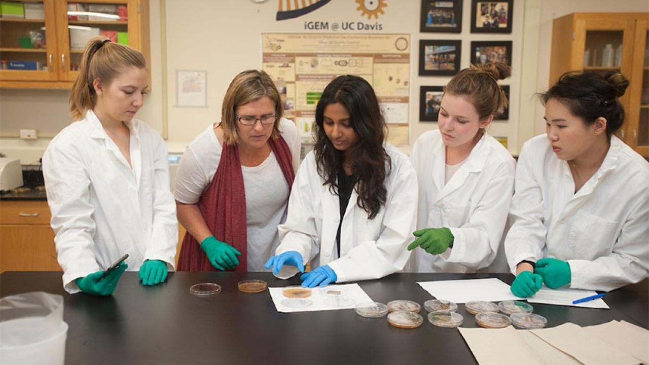 A professor and students look at experiment results at a lab bench.