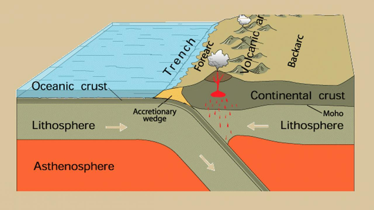 Cross section of a subduction zone