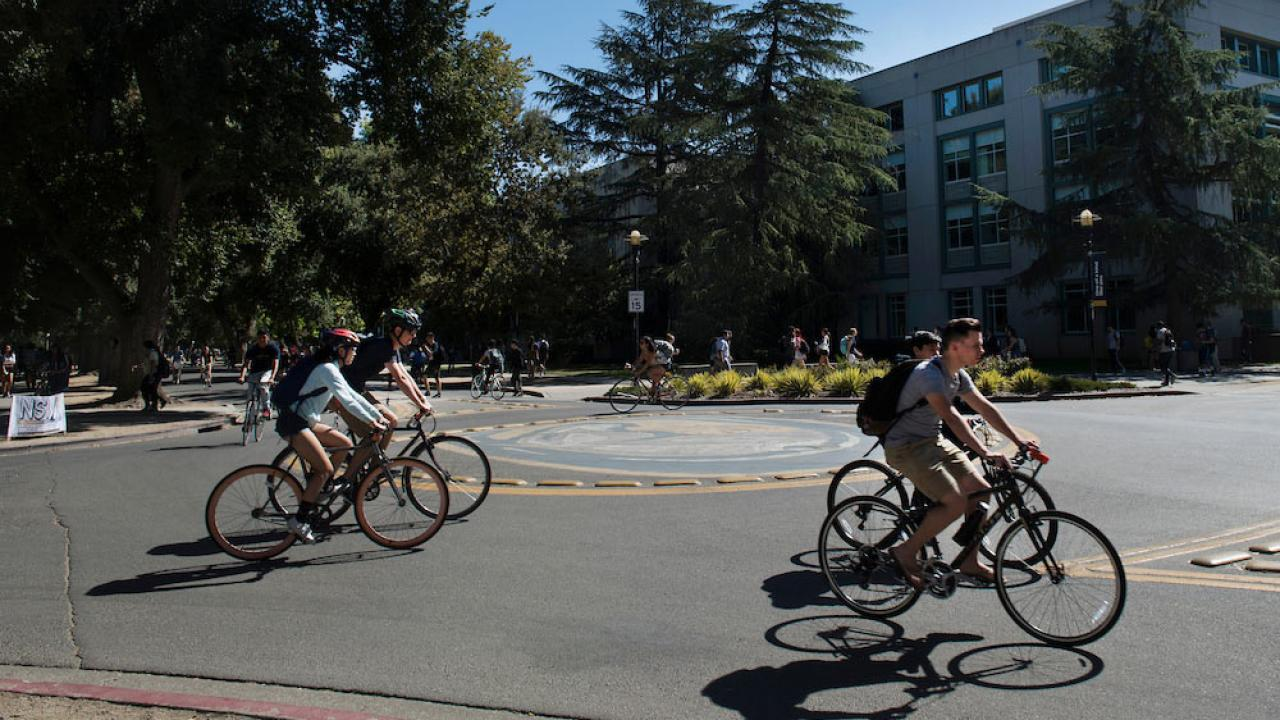 Students ride through a bike circle on the UC Davis campus