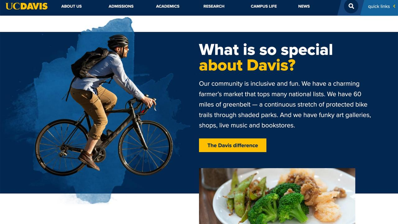 Screenshot of webpage about the city of Davis