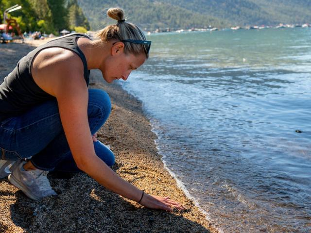 A UC Davis researcher examines the beach in South Lake Tahoe