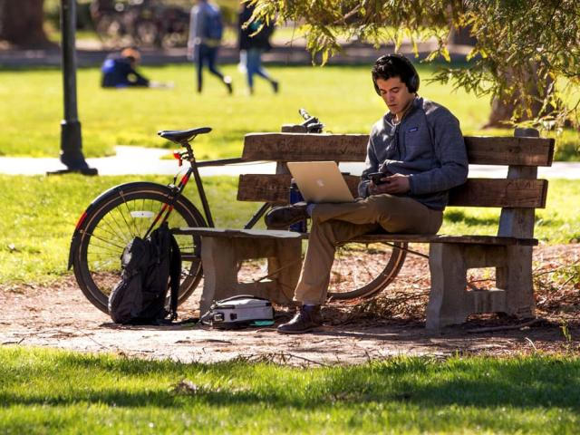 student sitting on a bench in the quad studying - freshman application tips
