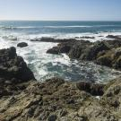 Rocky shore off Bodega Bay, California with view of Pacific Ocean
