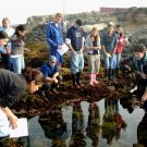 Scientist and students at ocean