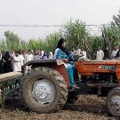 A woman driving a tractor as people watch