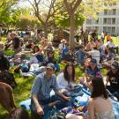 picnic day events at uc davis