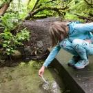 girl tests water quality in creek
