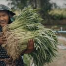 farmer carrying plants
