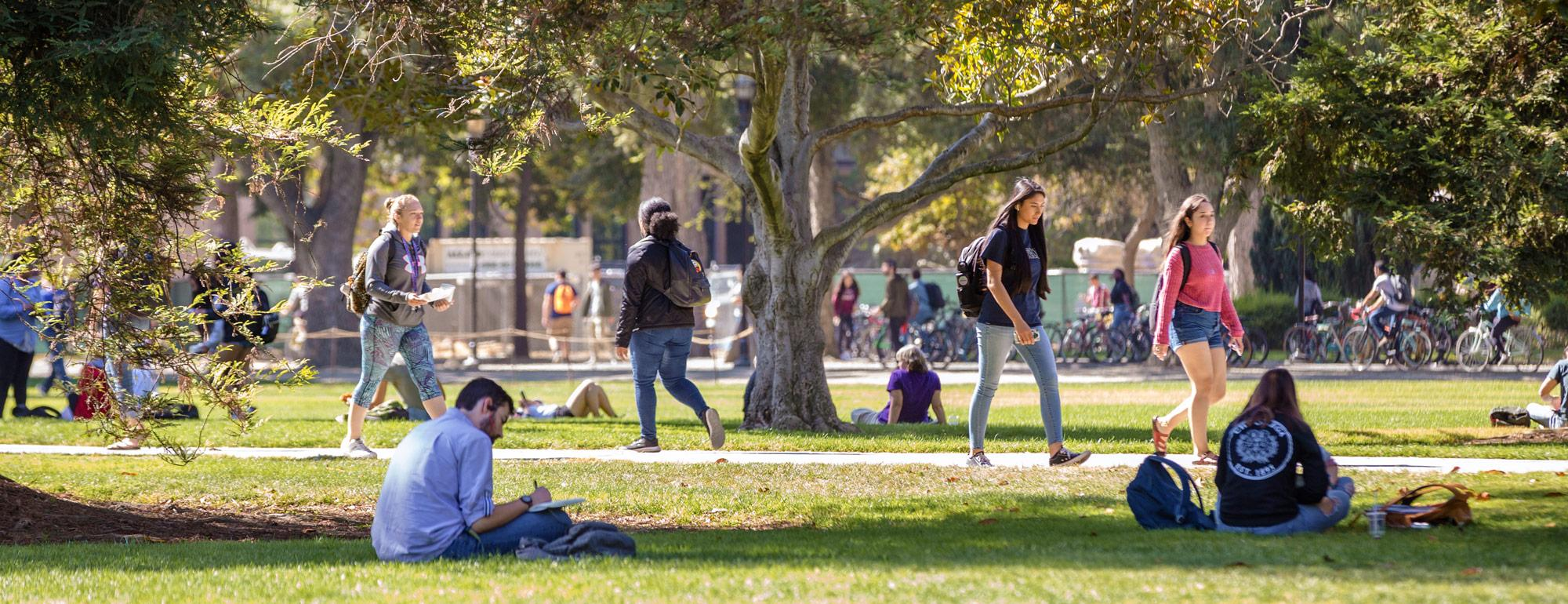 students sitting and walking, enjoying the quad on a sunny day