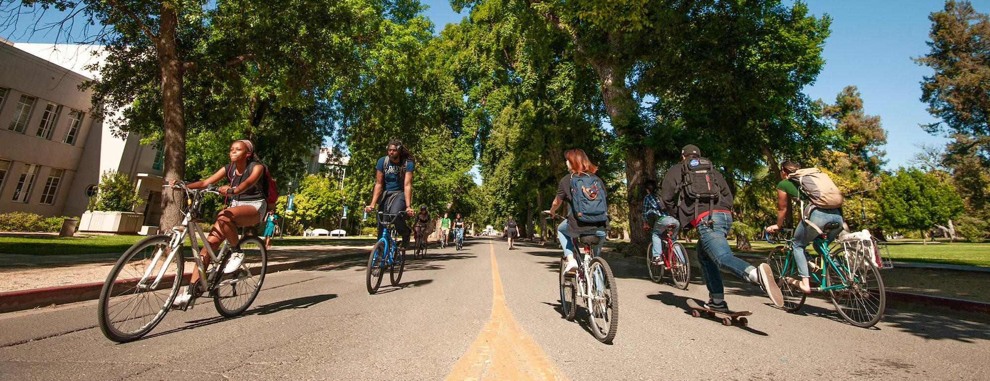 Students riding bicycles on west quad UC Davis