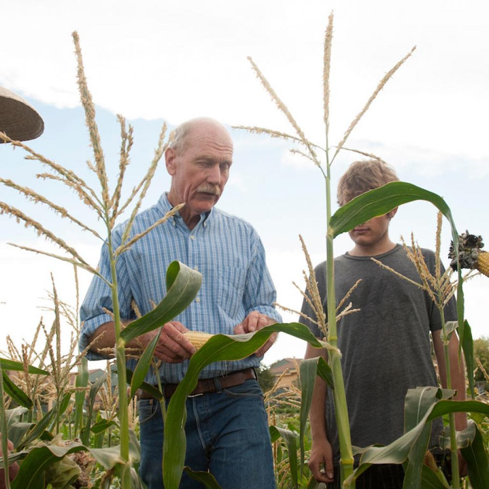 A professor discusses a corn crop with this students