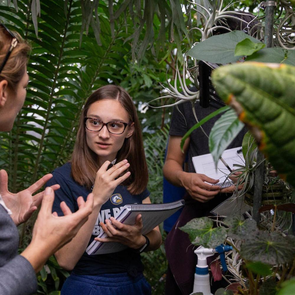 A student discusses a plant specimen with her professor in one of UC Davis's several green houses
