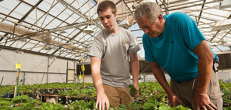 Young man and older man in a greenhouse pointing to plants