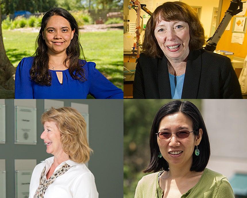 Cindy Rubio Gonzalez, Katherine Whittaker Ferrara, Jennifer Sinclair Curtis and Chen-Nee Chuah.