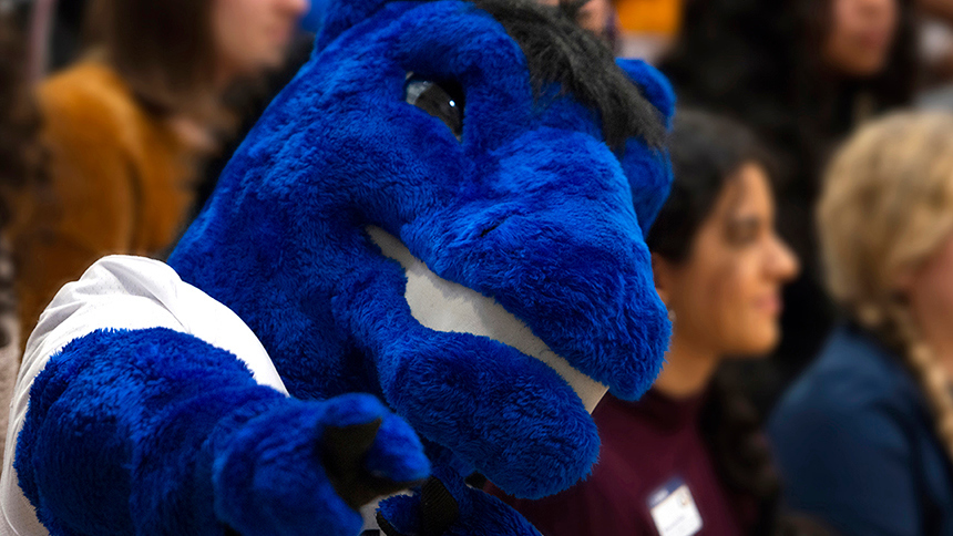 A closeup of the head of Gunrock, the UC Davis mascot