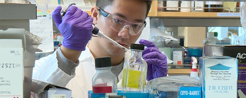 Male student working in lab