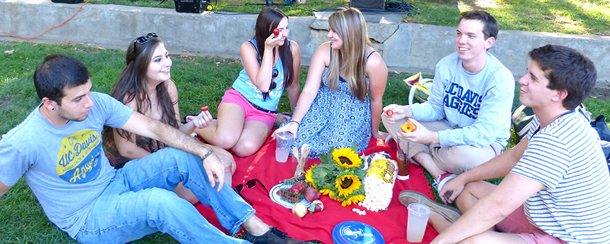 A group of UC Davis students sitting down for a picnic dinner on the lawn