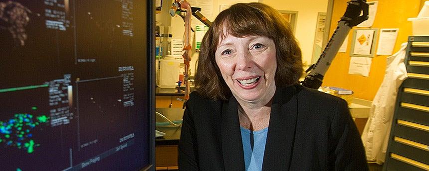 Biomedical engineering professor Katherine Ferarra