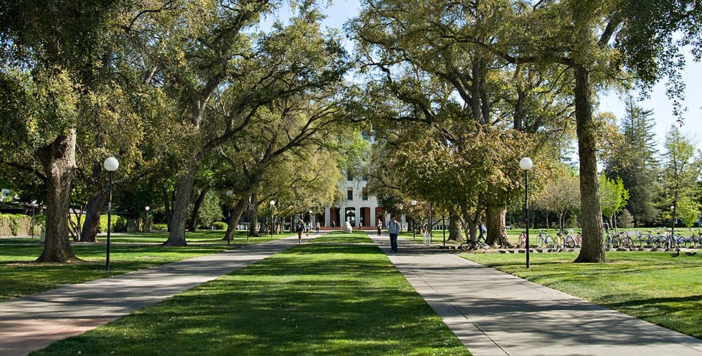 View of mall walk to UC Davis' Mrak Hall administration building under shady trees