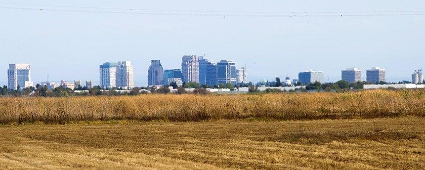 Skyline of Sacramento seen from a field