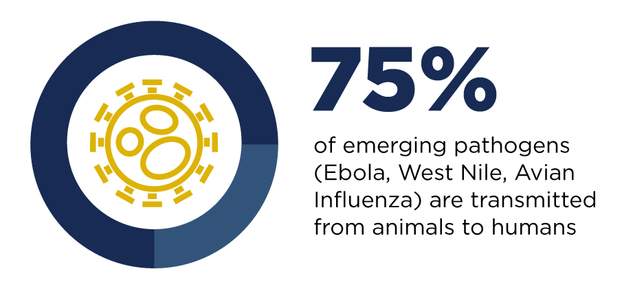 Zoonotic Diseases One Health Infographic - 75% of infectious diseases are transmitted from animals to humans