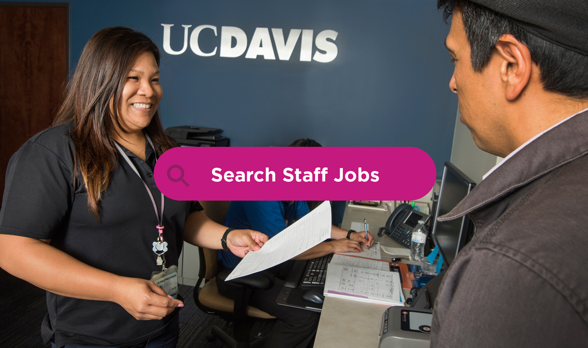 Search UC Davis Staff Jobs