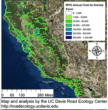 Map of California with colorful dots showing costs of highway collisions between vehicles and wildlife